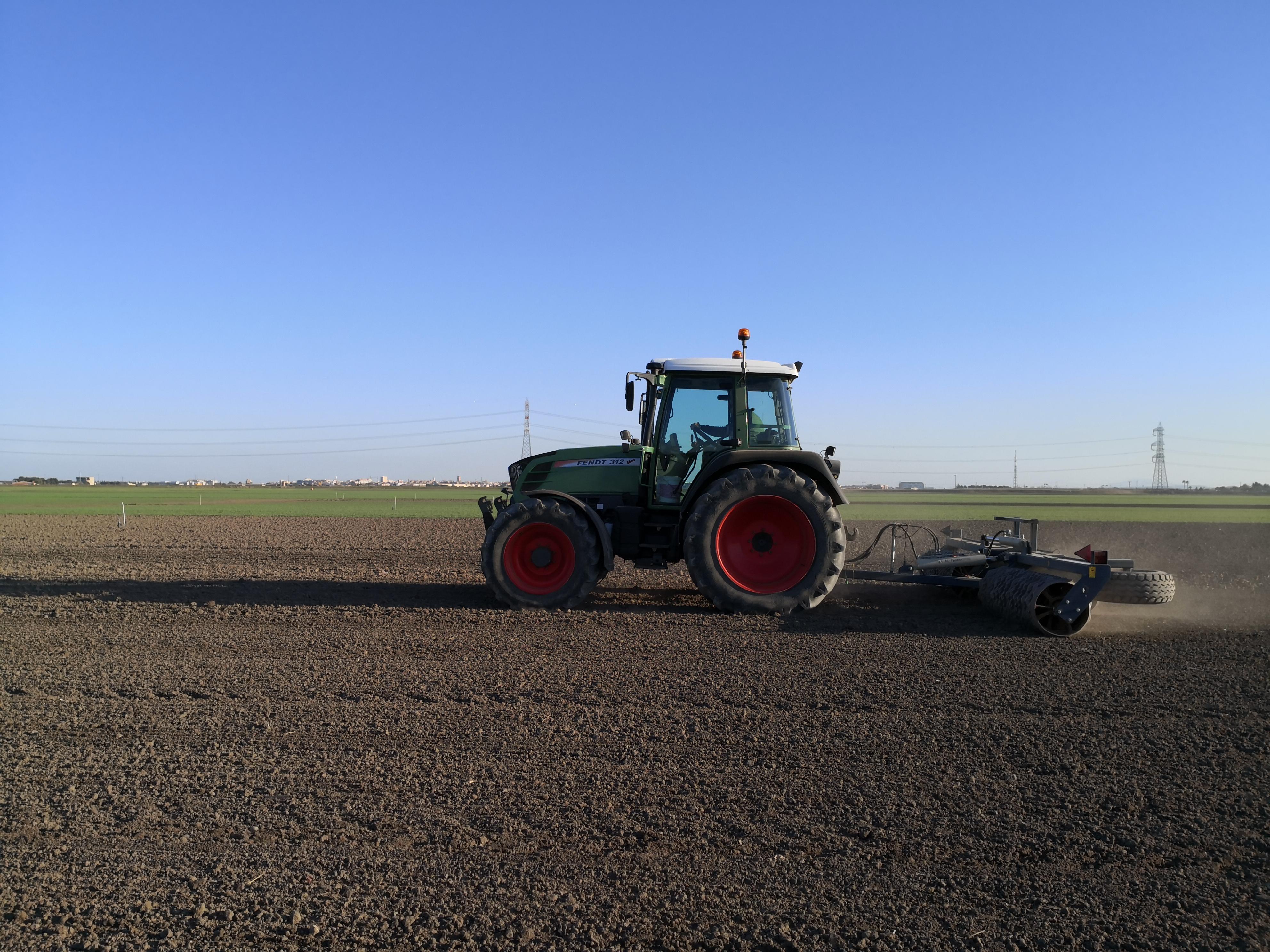 Semina della lenticchia (ECS) nel sito dimostrativo di Foggia a febbraio 2020 e successiva rullatura del terreno per ottenere una migliore germinazione