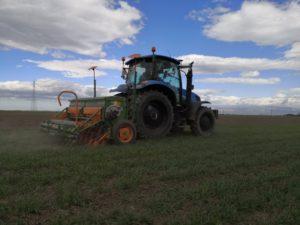 Terminata la bulatura in grano e orzo ECS, seminando erba medica (var. Gamma) nel sito dimostrativo di Foggia a marzo 2020