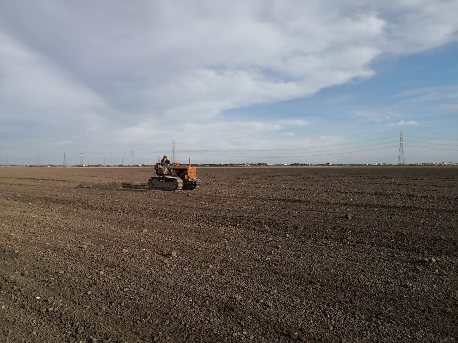 Livellatura del terreno nel sito dimostrativo di Foggia a novembre 2019